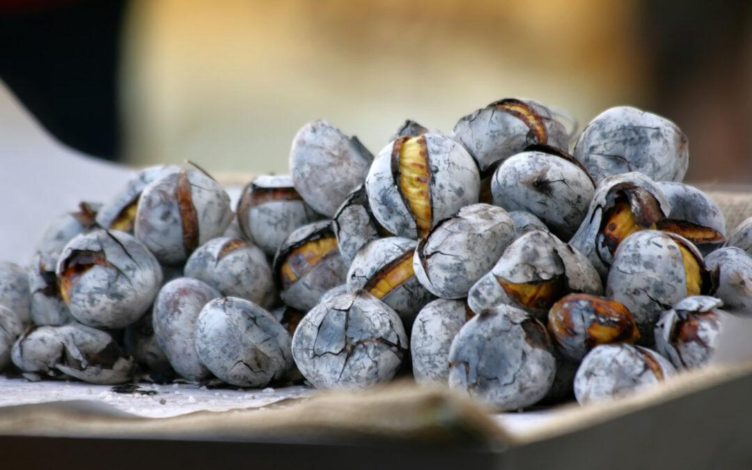 Castanhas – um fruto saudável
